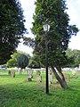 Lamp standard in churchyard.jpg