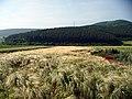 Lan de Orz - panoramio.jpg