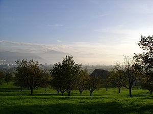 Landscape Zug