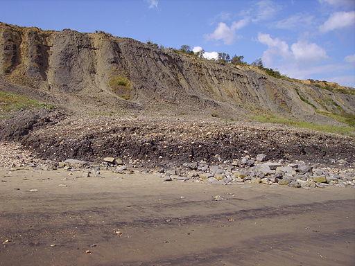 Landslip near Lyme