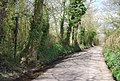 Lane south of Kilnhouse Farm, looking north - geograph.org.uk - 1256869.jpg