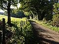 Lane to Clampitt - geograph.org.uk - 579618.jpg