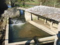 Lavoir moulin à eaux ph 2 . Saint Germain sur Ay . ERNOUF Guillaume.JPG