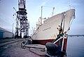 Le navire cargo ''Vingaholm''.jpg