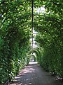 Le parc du palais de Rundale (7656218316).jpg