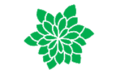 Leaf morphology rosette.png