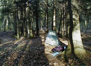 Leave no trace site.jpg