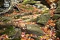 Ledges at Cuyahoga Valley National Park (10544299296).jpg