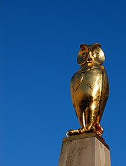 One of a number of golden owl sculptures outside Leeds Civic Hall