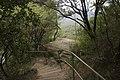 Leura Cascades Track - panoramio.jpg