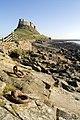 Lindisfarne (17568941).jpeg