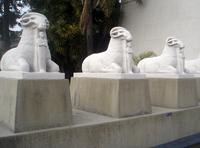 """Passarela das Criosfinge (""""Esfinges-caprinas"""") que antecedem o Museu Egípcio e Rosacruz da Suprema Grande Loja."""