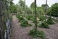 Linnés Hammarby - KMB - 16001000546977.jpg