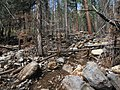 Little Bear Trail flood damage (9361771914).jpg