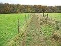 Littleworth Common, Shakespeare's Way - geograph.org.uk - 1047134.jpg