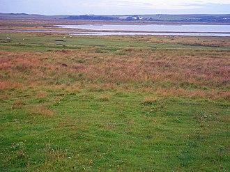 Loch Gruinart - Loch Gruinart and marsh fringe near the Allt a Ghil inflow