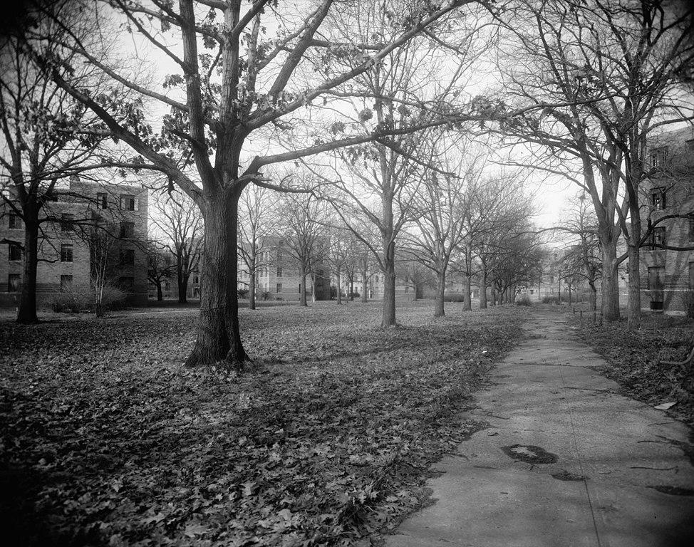 File:Lockefield Gardens - central mall looking northwest ...
