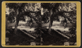 Looking east from North Mill Dam Falls, Little Falls, N.Y, from Robert N. Dennis collection of stereoscopic views.png