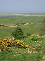 Looking northeast from the Friary Hills towards Blakeney Eye - geograph.org.uk - 166455.jpg