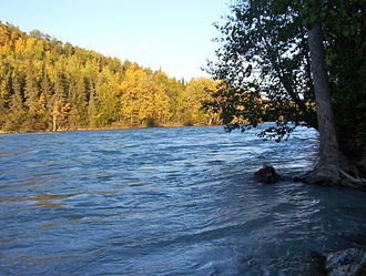 Kasilof River - The silty glacial content of the river produces the milky blue coloration