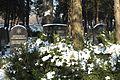 München Neuer israelitischer Friedhof 876.jpg