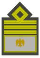MVSN-Comandante generale.png