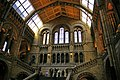 Main Staircase, Natural History Museum, London SW7 - geograph.org.uk - 1122282.jpg