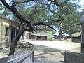 Majlishpur Primary School - panoramio.jpg