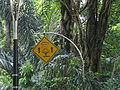 Malaysia - 050 - KL - what could this sign be for (3528801522).jpg