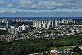 Manaus aerial view.jpg