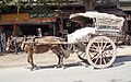 Mandalay-Transport-30-Pferdewagen-gje.jpg