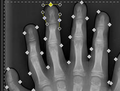 Manually-trace-hand.png