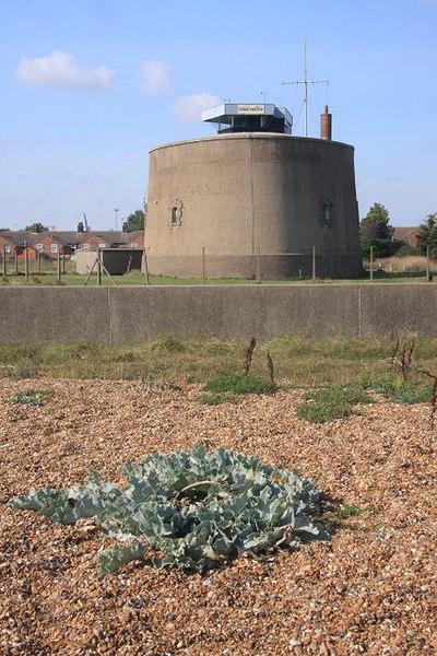 File:Martello Tower P - geograph.org.uk - 981798.jpg