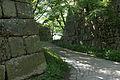 Marugame Castle07s3872.jpg