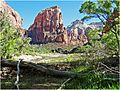 Maybe Just One More, Zion NP, Angel's Landing Trail 5-1-14zzd (14221202208).jpg