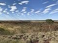 McDouall Ranges Tennant Creek.jpg