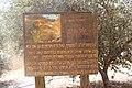 Memorial to the Jewish Fighting Women IMG 6253.JPG
