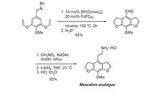 Carbon–hydrogen bond activation - Image: Mescalineprep