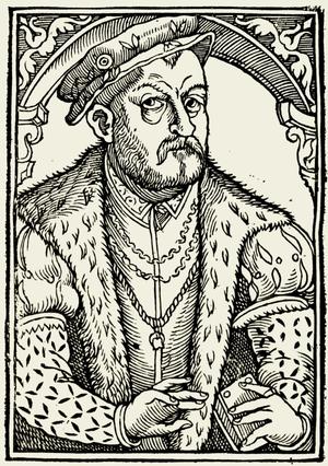 Mikołaj Rej cover
