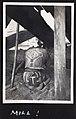 Mill in Japan (1914 by Elstner Hilton).jpg