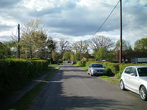 Chichester to Silchester Way - Still in use; the road at Milland