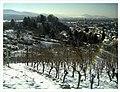 Minus 10 Grad Celsius Denzlingen Germany - Magic Rhine Valley Photography - panoramio (2).jpg