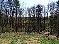 Modřany, Píšovický les, přes údolí k ZŠ Rakovského.jpg