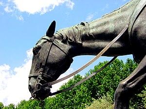 Rocinante - Image: Monumento a Cervantes (Madrid) 10f