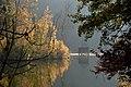 Moosburg Mitterteich Herbststimmung 02112014 540.jpg