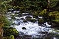 Mossy Rocks (38968610225).jpg
