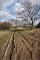 Muddy track at Block Fen - geograph.org.uk - 1189041.jpg