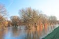 Muldehochwasser k3.jpg