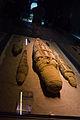 Mummified crocodiles, Roman Period - Crocodile Museum, Kom Ombo (3).jpg