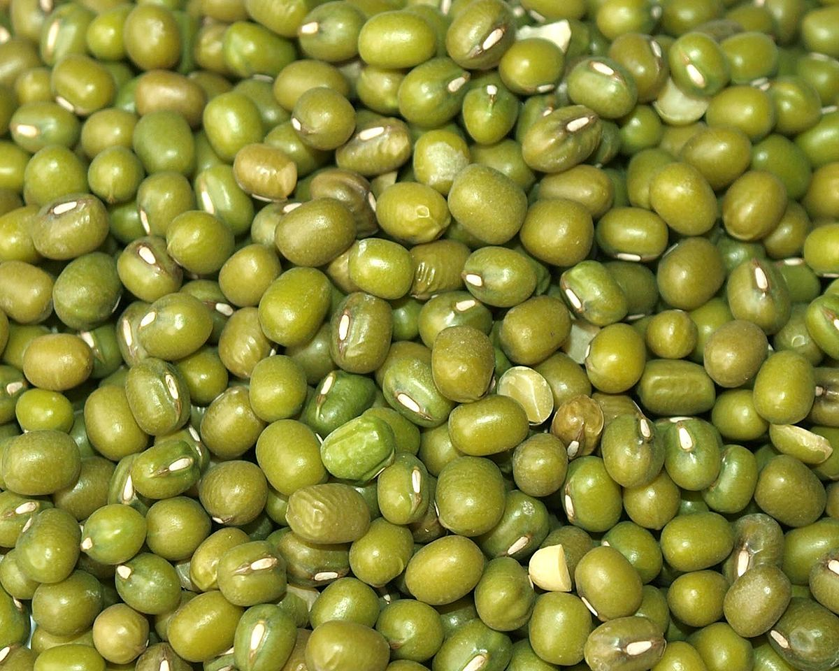 Image Result For Seeds And Beans